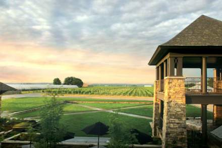 Trius Winery At Hillebrand