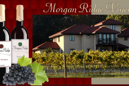 Morgan Ridge Vineyards