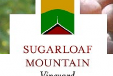 Sugarloaf Mtn. Vineyard