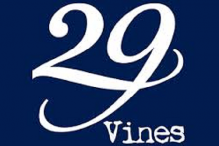 29 Vines And Above Ground Winery