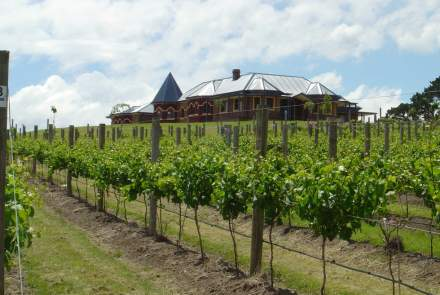 D'Angelo Estate Vineyard & Cellar Door