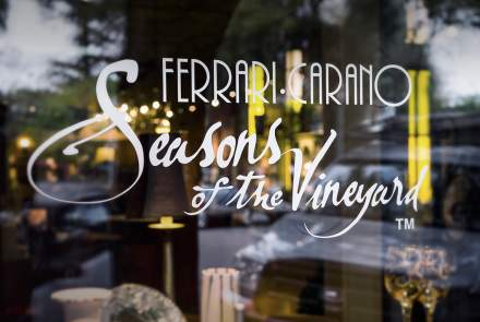 Ferrari-Carano's Seasons of the Vineyard Tasting Bar and Boutique