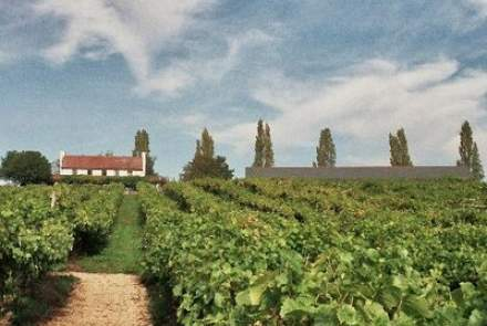 Three Choirs Vineyards