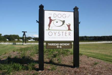 The Dog and Oyster Vineyard