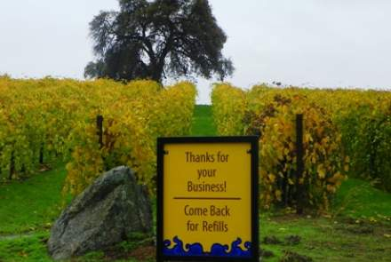 Convergence Vineyards