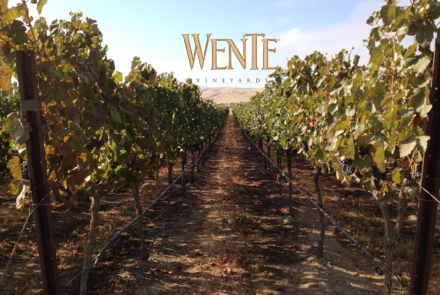 Wente Estate Winery and Tasting Room